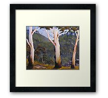 Forest View Framed Print