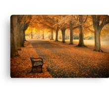 Golden Thoughts Canvas Print