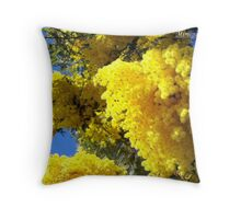 First mimosa in Nice Throw Pillow