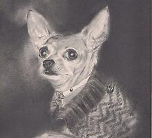 chihuahua portrait by marcoantonio