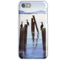 A Sunning Of Cormorants iPhone Case/Skin