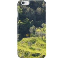 Hog's Hill iPhone Case/Skin