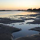 Sunset on Harrington by Catherine Davis