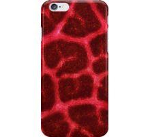 Leaf Veins iPhone Case/Skin