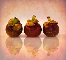 Purple Mangosteen by Priska Wettstein