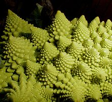 Romanesco, a work of Vegetable Art by laurieleec