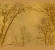 Landscapes! by sendao