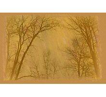 Landscapes! Photographic Print