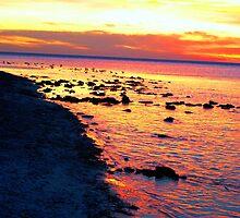 Glimpse - Aldinga Beach Sunset by Killashandria