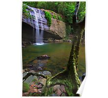 Natural Buderim Falls Poster