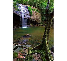 Natural Buderim Falls Photographic Print