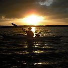 Kayaking in Tarpon Basin, Key Largo,  by healingart
