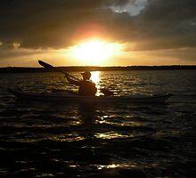 Kayaking in Tarpon Basin, Key Largo,  by healingart