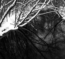 Huron River by jrier