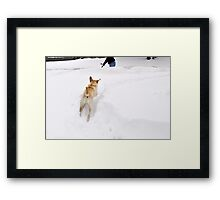 Sneak Attack on Dad!!!   Framed Print