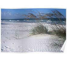 Sea Oats and Surf Poster