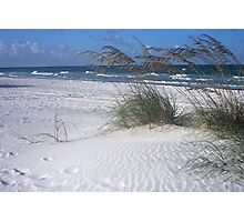 Sea Oats and Surf Photographic Print