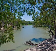 Edwards River Deniliquin  by Tom Newman
