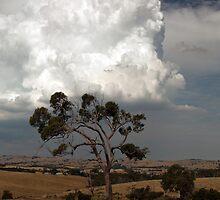 Summer storm by Tony Middleton