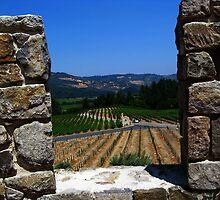 An Embrasure of Castello di Amorosa. Napa Valley, California 2008 by Igor Pozdnyakov
