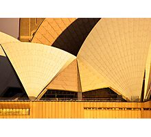 Golden Sails - Sydney Opera House Photographic Print
