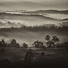 &#x27;Low Mist&quot; by debsphotos