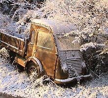 """Old Timer Renault Truck 60"""" by Albertus Van Wyk"""