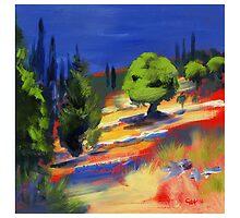 'Tiered terrain'- Olive grove Kephalonia by GailHelen