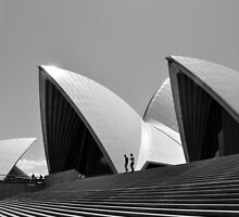 Opera  by STEPHANIE STENGEL | STELONATURE PHOTOGRAPHY