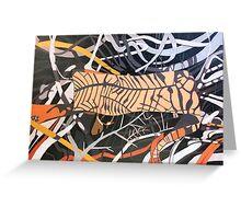 Rainforest Shadows, Lake St. Clair Greeting Card