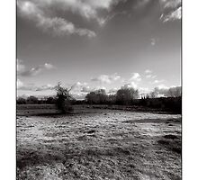 Purwell Meadow - Hitchin, Hertfordshire by MoGeoPhoto