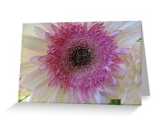A Flower for Heather Greeting Card