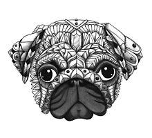 Pug by psydrian