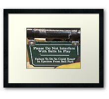 Baseball Sign  Framed Print