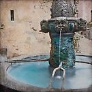 Verdigris Fountain in France by Leslie Nicole