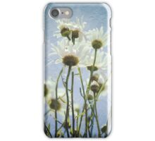 Daisies in the Sun iPhone Case/Skin