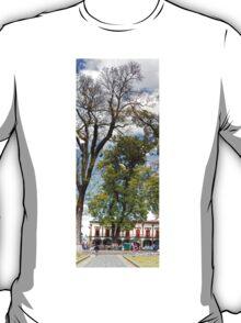 ©MS Patzcuaro Plaza IA. T-Shirt