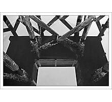 Shadows Cast Photographic Print