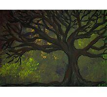 Tree of Dark Mood Photographic Print