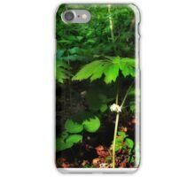 Parasols iPhone Case/Skin