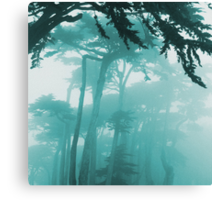 Forrest Fog photo painting Canvas Print