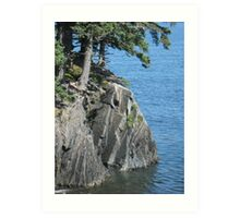 In between tree roots and sea is the rock Art Print