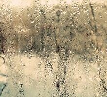 through the misty glass by Alexandra Brovco