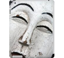 The Painted Lady iPad Case/Skin