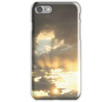 The Migration iPhone Case/Skin