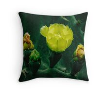 Yellow prickly pear flowers are blooming Throw Pillow
