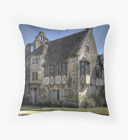 Alternative View Throw Pillow