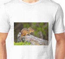 Chipmunk - Ottawa, Ontario Unisex T-Shirt
