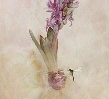 spring is here by aquaarte