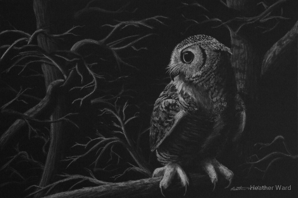 Night Owl - Great Horned Owl by Heather Ward